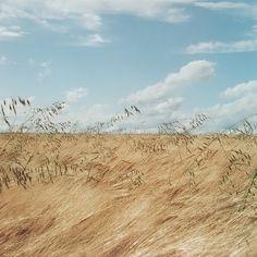 Gentle rippling breeze