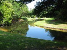 lawn, river plantat, jame river