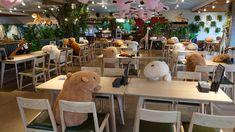 japanese zoo employs capybara stuffed animals to secure social distancing in its restaurant Shizuoka, Le Zoo, Zoo Keeper, Capybara, Cute Plush, Red Panda, Rodents, Design, The Zoo