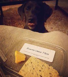 I want.  @deandeluca #alwaysinitforthefood #hungryhungryhippo #TGIF #weekendshenanigans #thekirbypup #corgidor #corgador #dogsofinstagram #talesofalab #buzzfeedanimals by thekirbypup