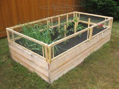 Vegetable Gardner posted detailed directions for making your own wooden garden box with a removable pest gate. Usually pest gates are a bit inconvenient. But since this one is removable, you'll have an easy tie gardening–just like usual. Or make them hinged and drop down.