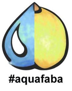 The Official Aquafaba Site