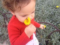 Cada día al la vuelta del parque recoge flores para mamá, mami y la abuela ;-) El amor por los hijos es algo muy grande y muy especial.
