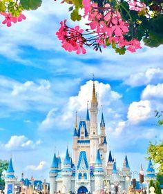 Disney Food, Disney Parks, Walt Disney World, Disney World Magic Kingdom, Cinderella Castle, Disneyland, Disney Castles, Instagram, Blog