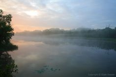 Daybreak at Fontenelle Forest | Flickr - Photo Sharing!