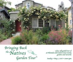 Registration for the Twelfth Annual Bringing Back the Natives Garden Tour closes on Saturday April 23rd! Native plant sales and talks are offered at select gardens. Bluegrass blues  flute duets Renaissance music and more will be performed at various gardens; children's activities will be offered at two gardens. Register at:  http://ift.tt/1rSMdKD #sfbaygardeners #bringingbackthenatives #gardentour #waterwisegardening #droughttolerant #nativegardens by sfbaygardeners #waterwise…