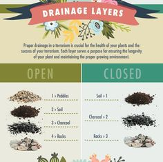 Drainage layers for open vs closed terrariums