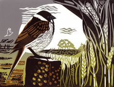 Reed Bunting - linocut - Pam Grimmond