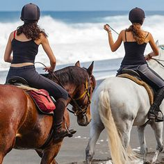 Incoming Tour Operator in Greece, Travel Agency / DMC aiming to build a trustful network between established Travel Agent Companies Greece Tourism, Tour Operator, Travel Agency, Tour Guide, Riding Helmets, Tours, Horses, Animals, Women