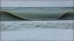 waves, 2015