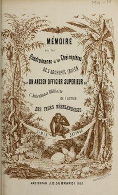 Title page from Mémoire sur les quadrumanes et les chéiroptères de l'archipel Indien; - Biodiversity Heritage Library