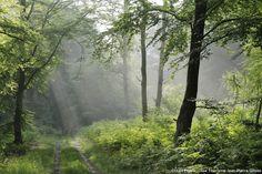 Vacances 100% nature dans l'Oise