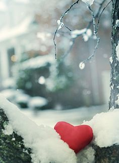 heart in the snow..