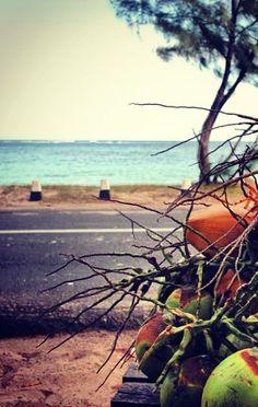 Coconut for sale on Coastline of Mauritius