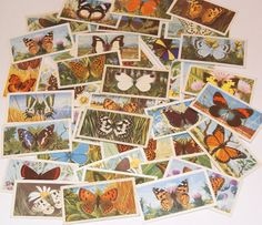 Lot of 40 Butterfly Tea Cards Vintage Brooke Bond for scrapbooking collage altered art journals by scrapitsideways, $6.00
