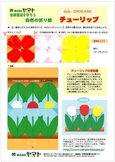 Tulip lap .jpg