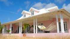 Pink Caribbean Beauty for sale in Anguilla