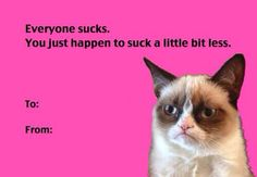 Need some funny ideas for a valentines day card memes for your crush? Checkout the memes given below. Grumpy Cat Valentines, Valentines Day Card Memes, Valentines Diy, Happy Valentines Day, Valentine Cards, Valentines Pick Up Lines, Naughty Valentines, Valentine's Day Quotes, Epic Quotes