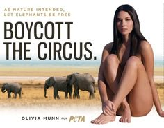 Celebs strip down for PETA