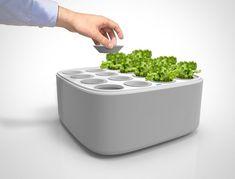 Cultivador hidropónico urbano escalable, cultiva en tu cocina
