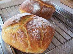 Aceasta este o reteta de paine casa despre care pot spune ca e una din cele mai bune din cate am incercat. Reteta de paine de casa cu cartofi... Potato Bread, Pastry And Bakery, Ciabatta, Bread Recipes, Food And Drink, Healthy Eating, Potatoes, Homemade, Easy