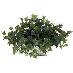 David Shaw Silverware NA LTD Ivy w/White Wash Planter Silk Plant, Green