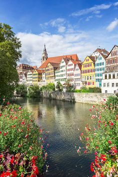 Photograph - Picturesque Tuebingen Neckar Front by Melanie Viola , Germany Europe, Timber Frame Homes, Cool Business Cards, Best Vibrators, Travel Bugs, Van, Tours, Mansions, House Styles