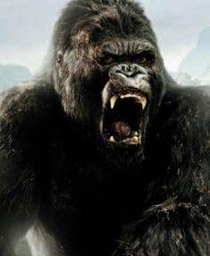 Ketkä mukana King Kong -elokuvassa? - Leffatykki