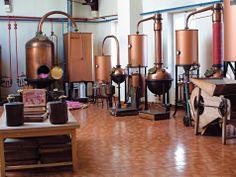 Parfumerie Molinard - Grasse