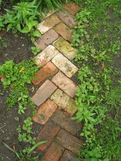 recycled garden, concrete masonry, outdoor living, Recycled Brick Pathway