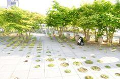 Small rooftop garden at Tokyo University by Michel Desvigne Landscape Architecture Design, Green Architecture, Sustainable Architecture, Contemporary Architecture, Parque Linear, Lanscape Design, Paving Pattern, Urban Park, Urban Furniture