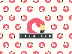 Flamingo by Raoul Camion