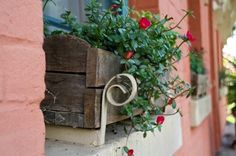 Urban landscapes, flower pots, flowering boxes, great looking yards and urban farming.