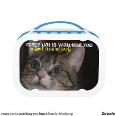 crazy cat is watching you lunch box