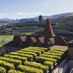 Sensacional vista do Douro aqui do hotel Six Senses Douro Valley. 🔝🔝🔝  #suaviagempodesermais #signaturetravel #viagem #travel #wanderlust @theglobalnomadsbr #trip #viajar #vista #sonho #linda #hotel #sixsenses