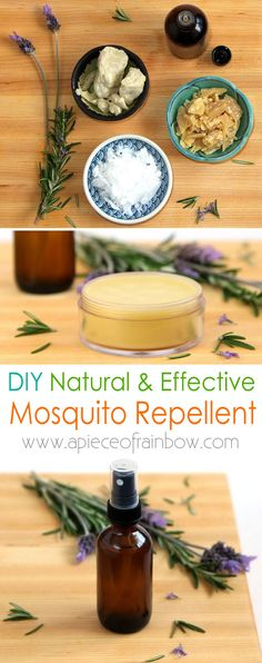 Two ways to make all natural mosquito repellent: a bug spray and a mosquito balm. Super easy to make and very effective! Tested while hiking in Florida! - A Piece Of Rainbow Diy Mosquito Repellent, Mosquito Spray, Natural Mosquito Repellant, Anti Mosquito, Insect Repellent, Doterra, Tips & Tricks, Sprays, Cleaning Hacks
