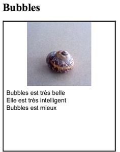 Chez Renée: Adopt an Escargot I'd love to do this! Students could take their escargots home and play with them, and maybe I could even get some real escargots to keep in class!