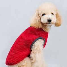 Moldes De Ropa Para Perros. Tu perro es una mascota con la que sales a diario a pasear y compartir en familia. La dedicación y el tiempo te hace ver que para que tu perro esté a la t I Love Dogs, Cute Dogs, Animals And Pets, Cute Animals, Pet Trailer, Crochet Dog Sweater, Dog Area, Dog Sweaters, Christmas Animals