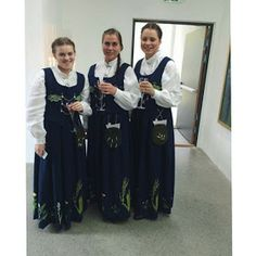Hello all, Part three of this overview is forthcoming. I was asked about the costumes of Trondelag, and so I wrote this one fi. Norwegian Clothing, Bridesmaid Dresses, Wedding Dresses, Norway, Costumes, Embroidery, Coat, Jackets, Clothes