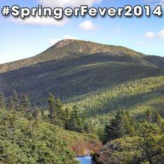 #SpringerFever2014 #AppalachianTrail #Trail #AT #BackpackingAT #Backpacking #Hiking #Hike #Latergram #NoFilter