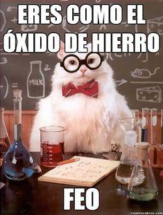 Gato_quimico - Una forma inteligente de insultar