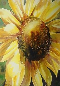 Sunflower Fun by Tammy Meeske Watercolor ~ 13 x 9