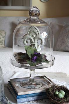 fleur-de-lis under glass
