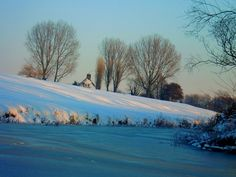 Winter silence in Holland