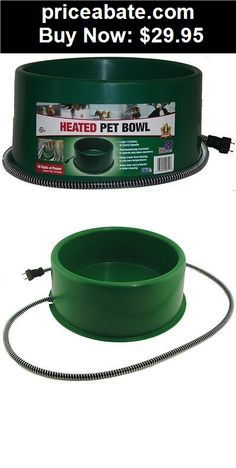 Animals-Dog: FI HEATED ELECTRIC DOG CAT PET WATER BOWL DISH OUTDOOR WATERER GREEN 1.5 GAL - BUY IT NOW ONLY $29.95