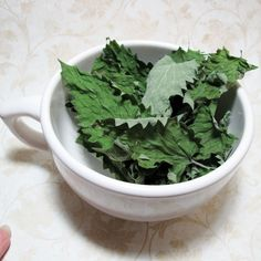Hey, I found this really awesome Etsy listing at https://www.etsy.com/listing/83408684/organic-whole-leaf-catnip-half-ounce