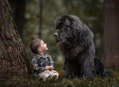 Big dog, small boy