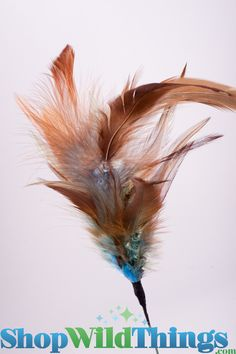 Our feathers on a stick are so super amazing! The colors are fantastic and will look amazing either by themselves in vases, grouped together in vases, or as filler pieces in any kind of centerpiece arr