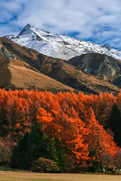 New Zealand mountain Scenery photo by on Envato Elements New Zealand Mountains, South Island, Small Island, Pacific Ocean, Beautiful Landscapes, Scenery, White Wines, Volcanoes, Paisajes