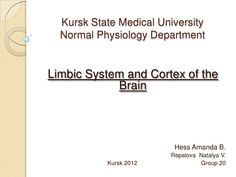 Limbic System and Cortex of the Brain
